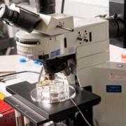 IVD equipment classification